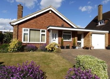 Thumbnail 3 bed detached bungalow for sale in Wadhurst Road, Ipswich
