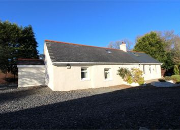 Thumbnail 4 bed cottage for sale in Temple Bar, Felinfach, Lampeter