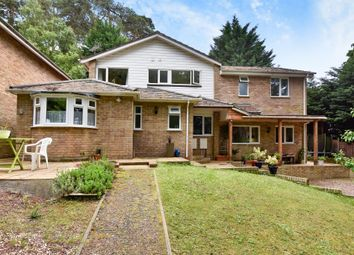 Thumbnail 6 bed detached house to rent in Carlton Close, Camberley