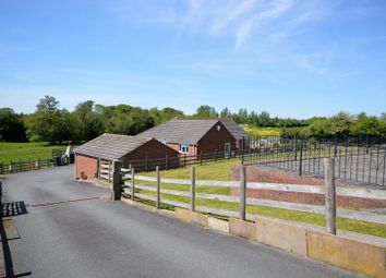 Thumbnail 3 bed detached bungalow for sale in Nesscliffe, Shrewsbury