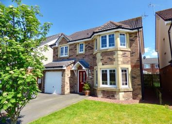 Thumbnail 4 bed detached house for sale in Caulstran Road, Dumfries, Dumfries And Galloway