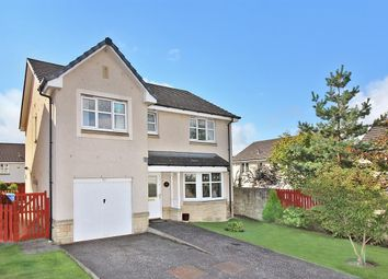 Thumbnail 4 bedroom detached house for sale in Fulmar Crescent, The Inches, Larbert