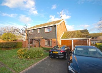 Thumbnail 4 bed detached house to rent in Gernon Close, Broomfield, Chelmsford