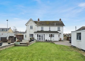 Thumbnail 4 bedroom detached house for sale in Court Lane, Seaton