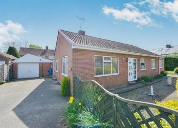 Thumbnail 3 bed bungalow for sale in Great Langton, Northallerton