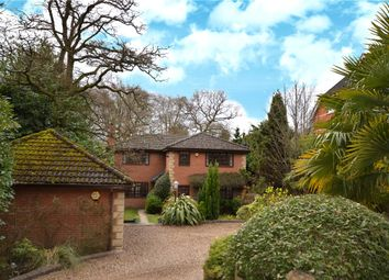 Thumbnail 4 bed detached house for sale in Crawley Ridge, Camberley, Surrey