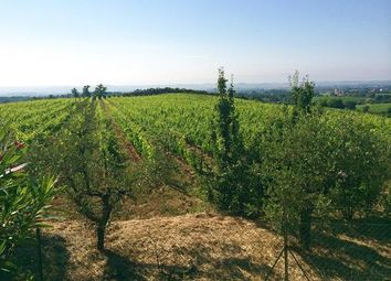 Thumbnail 3 bed farmhouse for sale in Montepulciano, Montepulciano, Siena, Tuscany, Italy