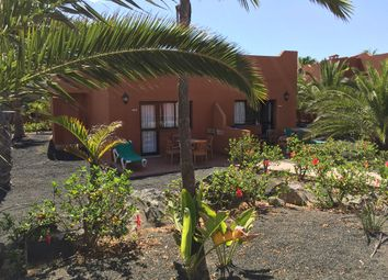 Thumbnail 1 bed apartment for sale in Oasis Papagayo, Corralejo, Fuerteventura, Canary Islands, Spain