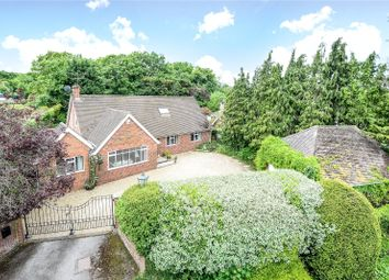 Thumbnail 4 bed detached bungalow for sale in Warfield Street, Warfield, Berkshire