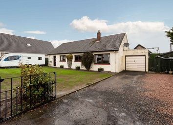Thumbnail 4 bed bungalow for sale in West Hemming Street, Letham, By Forfar