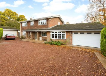 Thumbnail 4 bed detached house to rent in Old Farm Close, Knotty Green, Beaconsfield