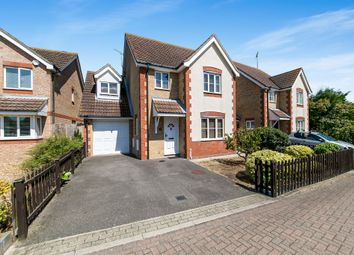 Thumbnail 4 bed detached house for sale in Buttercup Way, Southminster