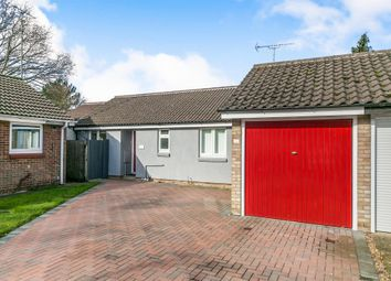 Thumbnail 3 bed detached bungalow for sale in Columbine Mews, Stanway, Colchester