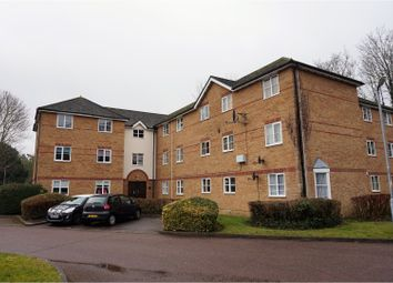 Thumbnail 2 bed flat to rent in Chagny Close, Letchworth Garden City