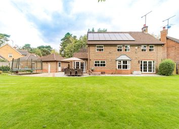 Little Fryth, Finchampstead, Wokingham RG40. 5 bed detached house