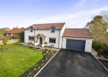 Thumbnail 4 bed detached house for sale in Cooper Lane, Potto, Northallerton, North Yorkshire