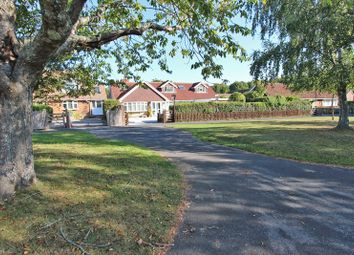 Thumbnail 5 bed bungalow for sale in Whitemoor Road, Brockenhurst, Hampshire