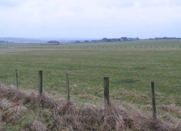 Thumbnail Land for sale in Plot At 4 Hempriggs Row, Wick