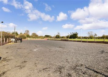 Hovefields Drive, Wickford, Essex SS12. 2 bed detached bungalow for sale