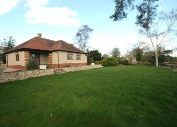 Thumbnail 3 bed property to rent in Priory Road, Stamford
