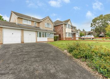 Thumbnail 4 bed detached house for sale in Brecon Way, Huntingdon