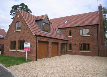 Thumbnail 6 bed detached house to rent in Top Lodge Close, Lincoln, Lincolnshire