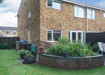 3 bed semi-detached house to rent in Eden Grove, Birmingham B37