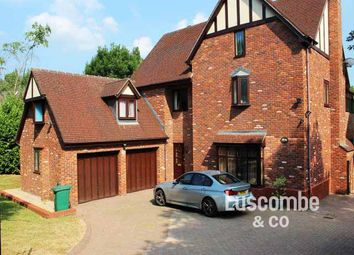 Thumbnail 4 bed detached house to rent in The Old Paddocks, Old Chepstow Road, Langstone