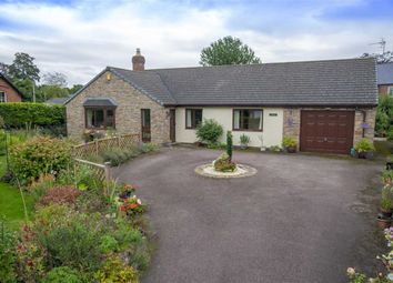 Thumbnail 4 bed detached bungalow for sale in Llanymynech