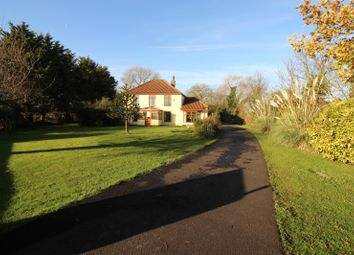 Thumbnail 4 bed property for sale in Acle Bridge, Norwich
