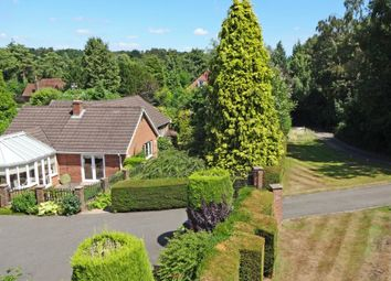 Thumbnail 3 bed detached bungalow for sale in Dorking Road, Walton On The Hill, Tadworth
