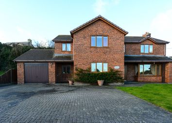 Thumbnail 4 bed detached house for sale in New Road, Gwespyr, Holywell