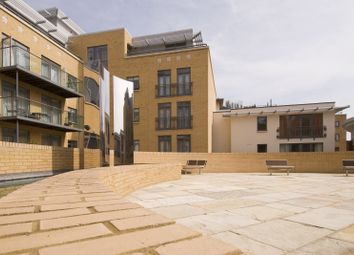 Thumbnail 2 bed flat to rent in The Belvedere, The Belvedere, Homerton Street