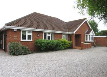 Thumbnail 4 bed bungalow to rent in Ipswich Road, Colchester