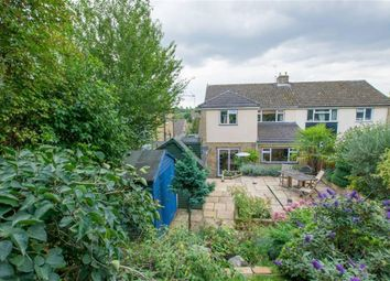 Thumbnail 4 bed semi-detached house for sale in Mandeville Road, Hertford, Herts