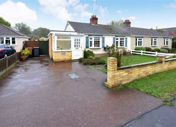 Thumbnail 3 bed semi-detached bungalow for sale in Roman Road, Little Waltham, Essex