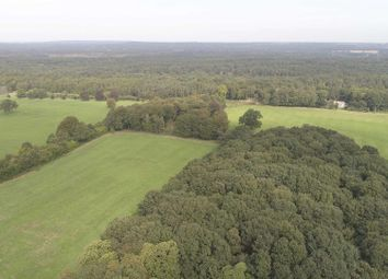 Thumbnail Land for sale in Haslemere Road, Witley, Godalming