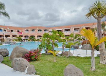 Thumbnail Studio for sale in Fanabe Playa, Tenerife, Spain