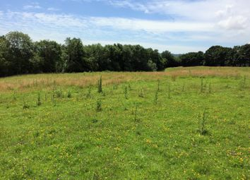 Thumbnail Land for sale in Land, Sedlescombe