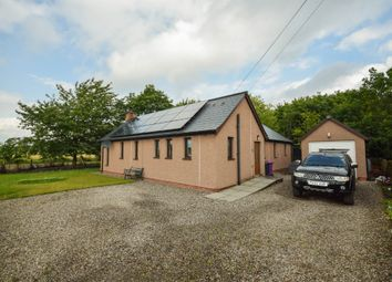 Thumbnail 3 bed bungalow to rent in Muirton Of Drumshade, Roundyhill, Kirriemuir, Angus
