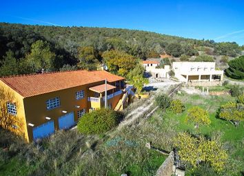 Thumbnail 14 bed villa for sale in Silves, Algarve, Portugal