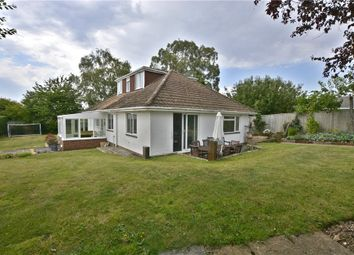 Property for Sale in Winchester - Buy Properties in Winchester - Zoopla