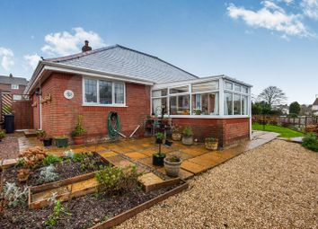Thumbnail 3 bedroom detached bungalow for sale in Woodbury Lane, Axminster