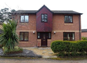 Thumbnail 4 bed detached house to rent in Pine Ridge, Northampton