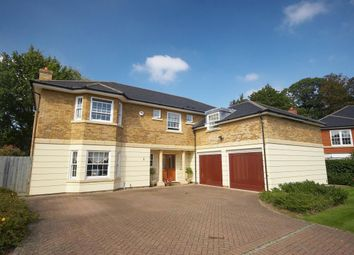 Thumbnail 5 bed detached house to rent in Lytton Park, Cobham