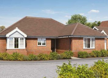 Thumbnail 3 bed detached bungalow for sale in Plot 7, Bell's Meadow, The Street, Raydon