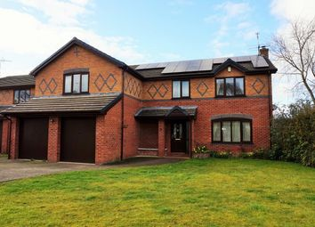 Thumbnail 4 bedroom detached house for sale in Greenfield View, Wrexham
