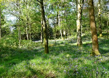 Thumbnail Land for sale in Dalbeattie