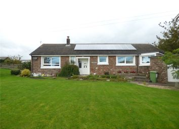 Thumbnail 4 bed detached house for sale in Blencogo, Wigton, Cumbria