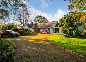 Thumbnail 5 bed bungalow for sale in St. Tudy, Bodmin